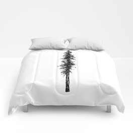 Alone in the forest - a solitary, towering Douglas Fir tree Comforters