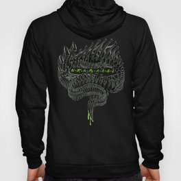 Drake's Equation Hoody