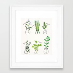 Mason Jar Herbs Framed Art Print