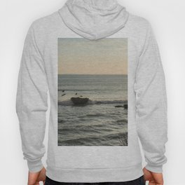 Sunset Sicily birds Hoody