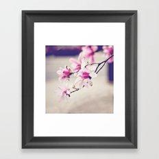 Pink Magnolias Framed Art Print