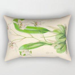 Odontoglossum Orchid Vintage Botanical Floral Flower Plant Scientific Illustration Rectangular Pillow