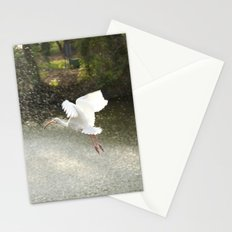 White Ibis on Takeoff Stationery Cards