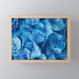 French Blue Framed Mini Art Print
