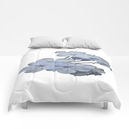 Pale Blue Plumbago Isolated on White Background  Comforters
