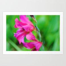 Ruffled Blooms Art Print