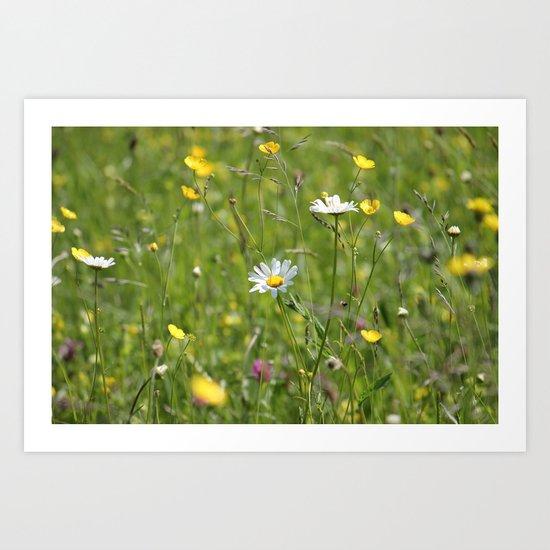Wild meadow Art Print