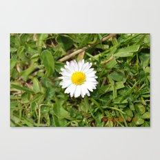 Spot Flower Canvas Print