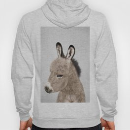 Donkey - Colorful Hoody