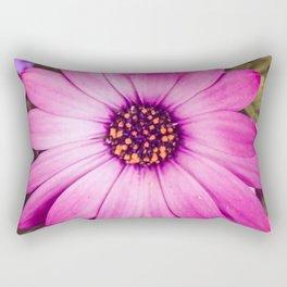 Ostentatious Osteospermum Rectangular Pillow