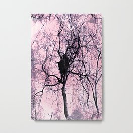 Pale Pink Long Island Forest Metal Print