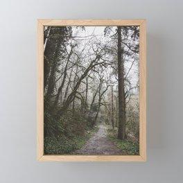Frosty Forest Path Framed Mini Art Print