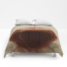 Ciderlamp Comforters