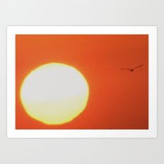 Flying next to the sun Art Print