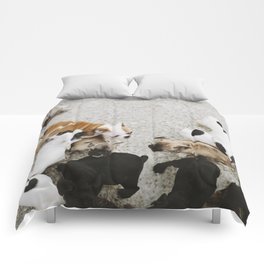 Oh puppy dogs Comforters
