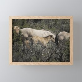Young but Keeping Up Framed Mini Art Print