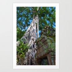 Temple Banyan Tree Art Print