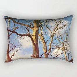 Treptow VI Rectangular Pillow