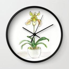 Slipper Orchid Wall Clock