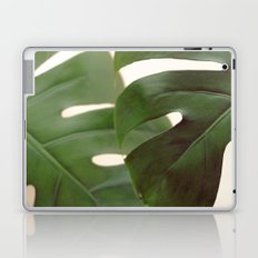 Frond Laptop & iPad Skin