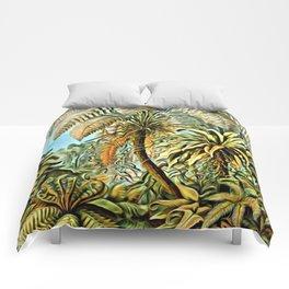 TROPICAL JUNGLE-Ernst Haeckel Comforters