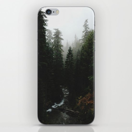 Rainier Creek iPhone & iPod Skin