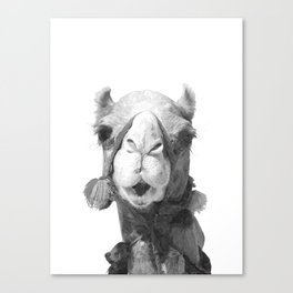 Black and White Camel Portrait Canvas Print