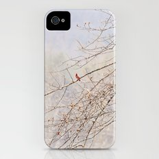 A Spot of Red on a Winter's Day iPhone (4, 4s) Slim Case
