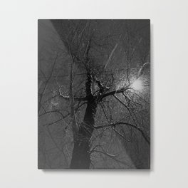 Naked Tree in a Flurry Metal Print