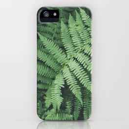 Fern Bush Nature Photography | Botanical | Plants iPhone Case