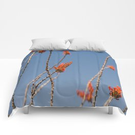 Ocotillo in Bloom Comforters