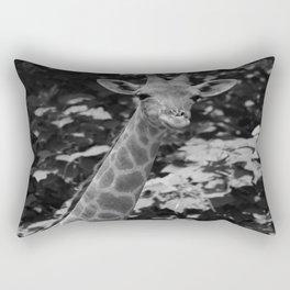 What's on Rectangular Pillow