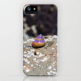 Trailblazer iPhone Case
