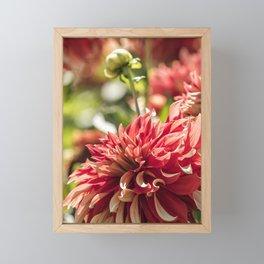 Kinship Framed Mini Art Print
