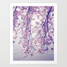 The Curtain Art Print
