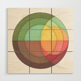 Concentric Circles Forming Equal Areas Wood Wall Art