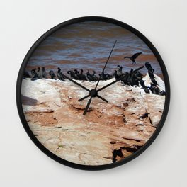 Double Crested Cormorant landing Wall Clock