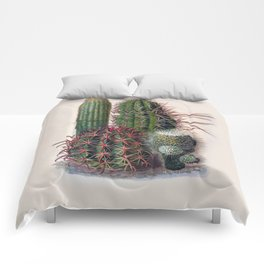 Vintage Cactus Print Comforters