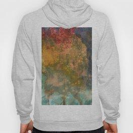 Abstract No. 227 Hoody