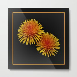 dandelion flying saucers (square) Metal Print