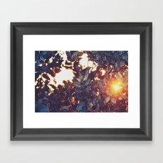 A sunny afternoon Framed Art Print