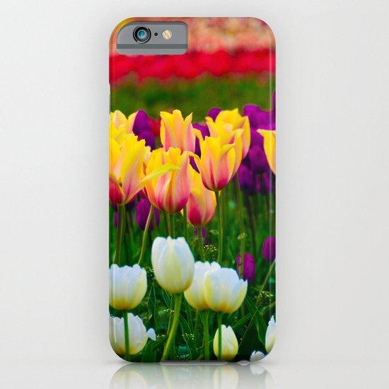 Fields of Color III, Woodburn Tulip Festival iPhone & iPod Case