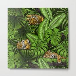 Jungle kitties  Metal Print