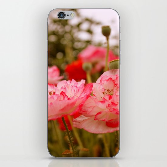 Pink Poppies iPhone & iPod Skin