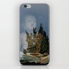 Reflectant iPhone & iPod Skin