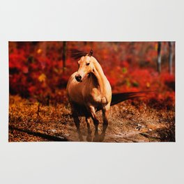 Horse Colour Rug