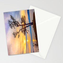 Baikal pine Stationery Cards