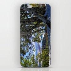 Fall in the Rockies iPhone & iPod Skin