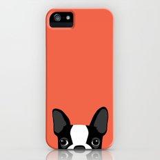 Boston Terrier Slim Case iPhone (5, 5s)