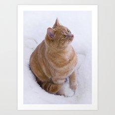 Kitten Discovers Snow! Art Print